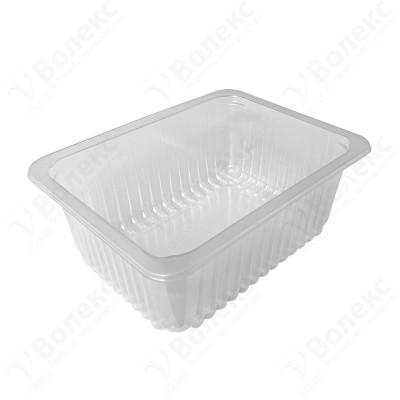 187x137 H:71 Food Tray