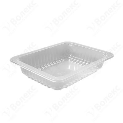 187x137 H:43 Food Tray